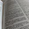 Dictionnaire San-Antonio